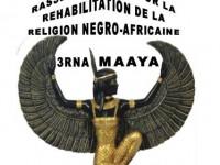 Pourquoi le site web de 3RNA-Maaya ?